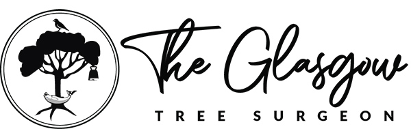 Tree Surgeon Glasgow